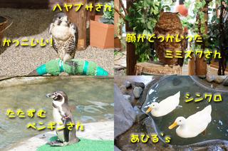 20130926どうぶつ王国3.jpg