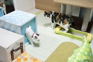 20131010二日目1.JPG