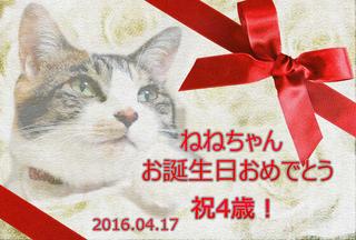 20160417ねねちゃん誕生日カード.png