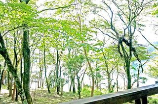 20161110箱根2.JPG