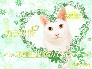20170430カヲル君誕生日.jpg